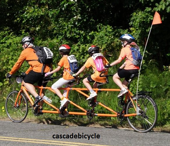 cascadebicycle-carigold-img2.png