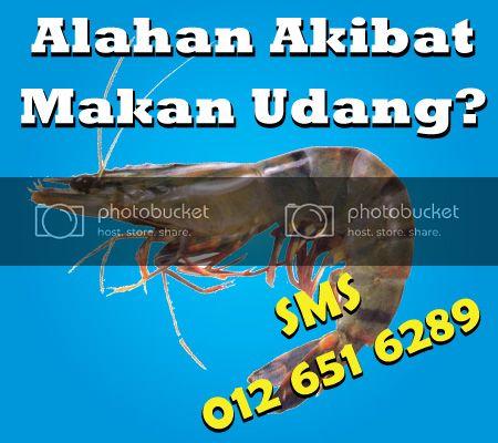 ezi-udang400fb_zpsf148826d.jpg